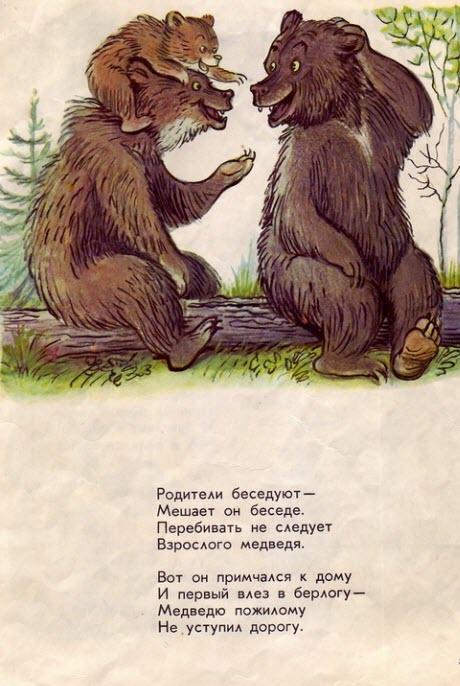 Кот том стих медведя
