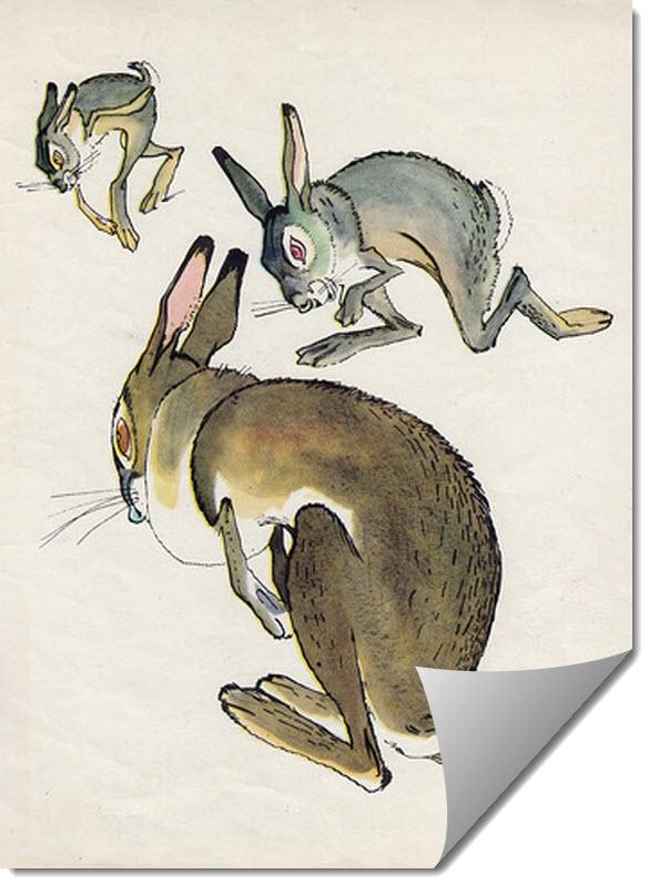 картинка заяц храбрые уши считаете рамки